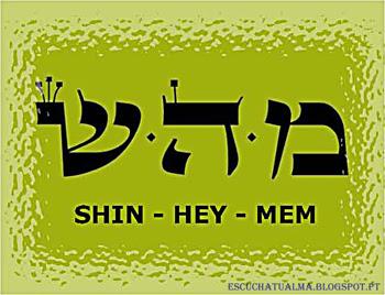 MEM HEY SHIN