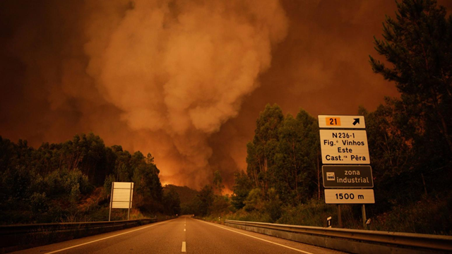 Smoke rises from fire in the Leiria District of Portugal, on 17 June 2017. Photo: Paulo Cunha / European Pressphoto Agency