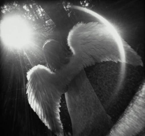 Angel Light In The Dark, Angels 5