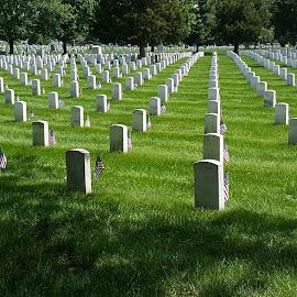 Memorial  by Gregg Moreland - City,  Street & Park  Cemeteries ( arlington, cemetery )