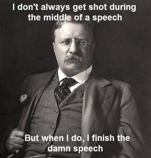 Theodore Roosevelt Quotes Amusing 50 Best Theodore Roosevelt Quotes About Success