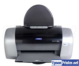 Reset Epson D88 printing device by application