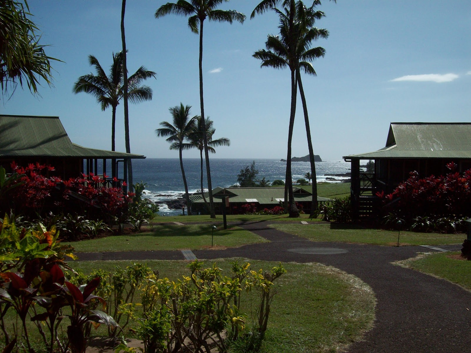 Hawaii Day 5 - 114_1595.JPG