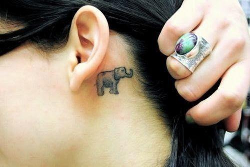 elefante_tatuagens_59
