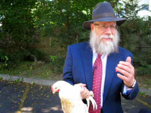 Swinging Chicken Ritual Divides Orthodox Jews