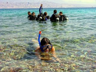 Экскурсия в Эйлат. Красное море. Гид в Израиле Светлана Фиалкова.