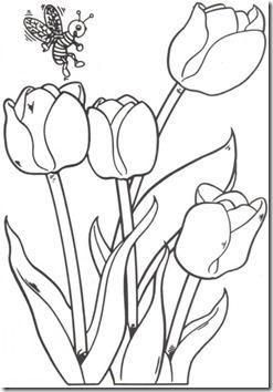 11flores primavera colorear  (42)