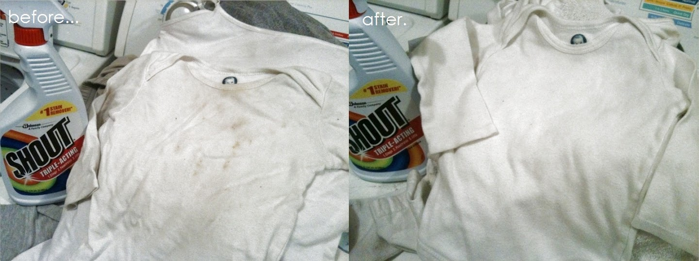 Remove Those Stains With Shout Trigger The Food Test Honey Lime