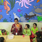 Introduction to Star Fish For Nursery at Witty World (25.01.2017)