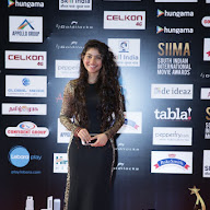 SIIMA 2016 Red Carpet Day 2 Photos