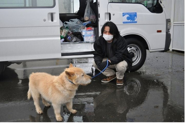 Police Dogs Missing in Fukushima
