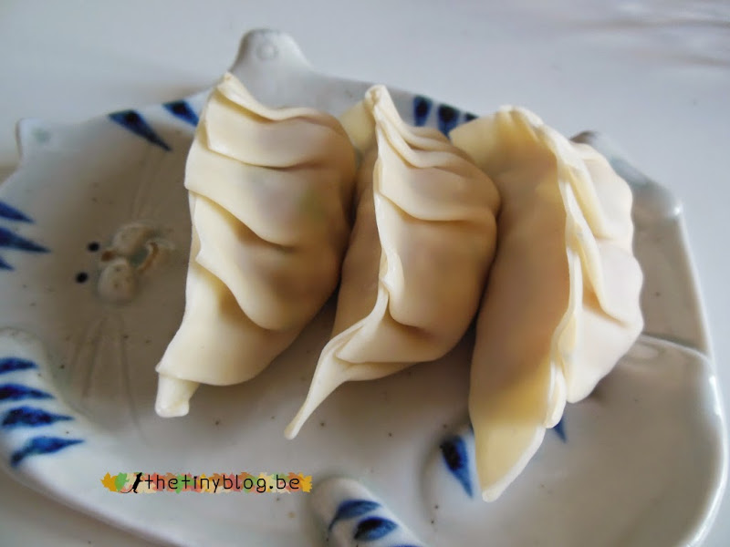 Gyoza Home Making