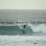 _DSC1836.thumb.jpg