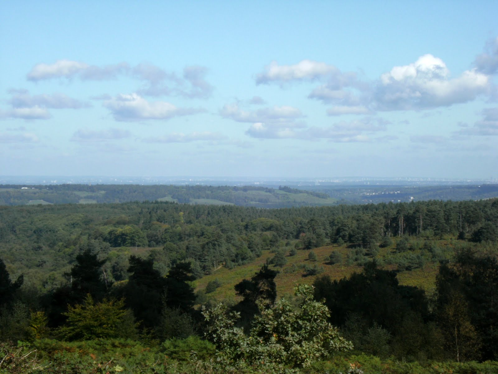 1009250004 View north from Leith Hill