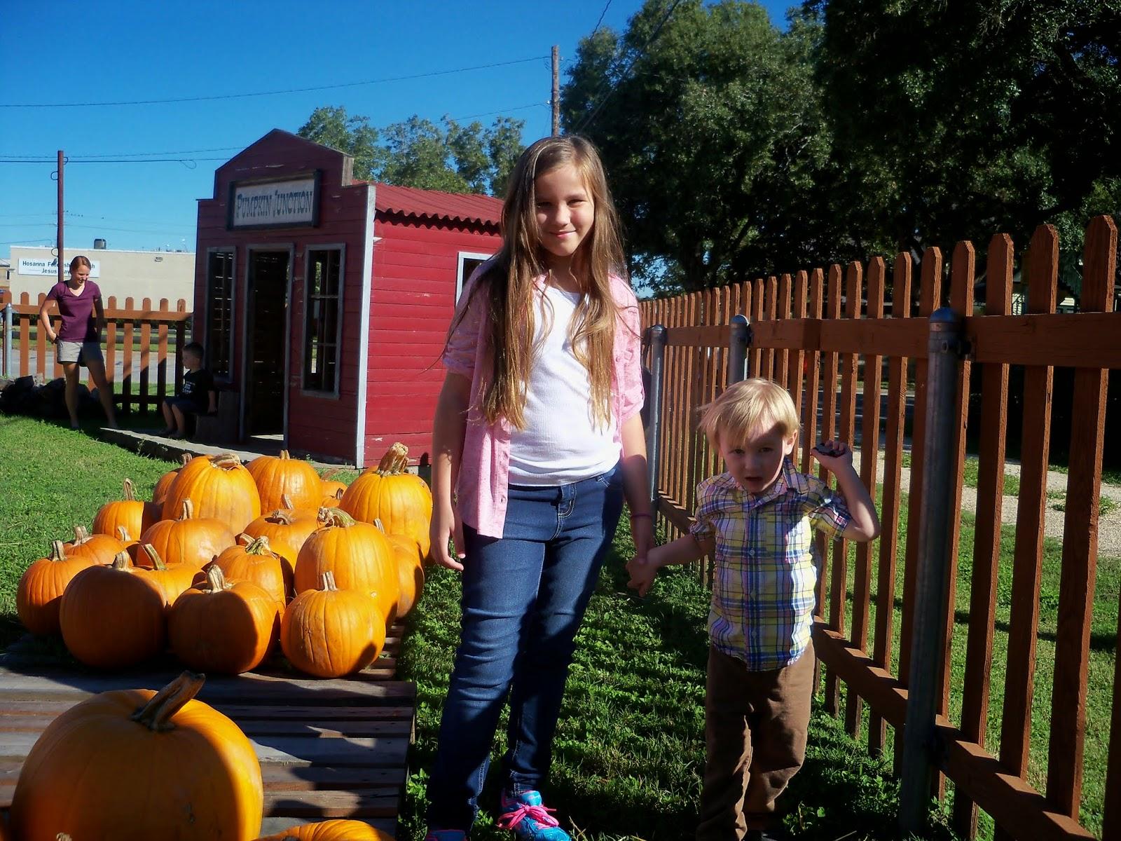 Pumpkin Patch 2014 - 116_4463.JPG
