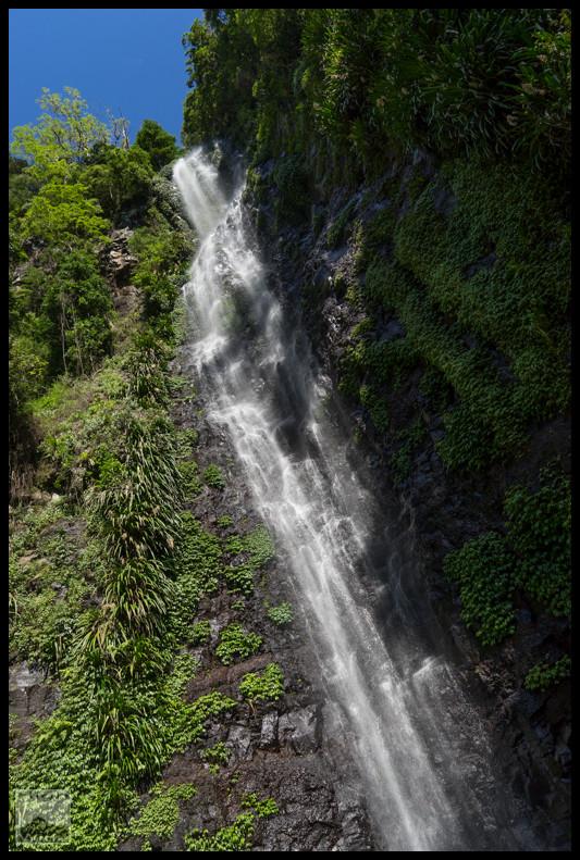 Larapinta Falls