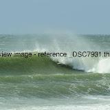 _DSC7931.thumb.jpg