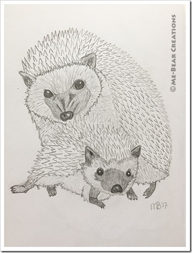 Hedgehogs_02