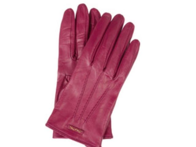 Handschuhe – wärmstens zu empfehlen