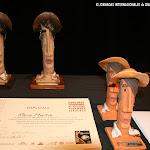 Entrega de Premios del Concurso Internacional de Guitarra Alhambra para Jóvenes. CIGAJ 2013. Algunos de los premiados al haber venido de otros lugares, no pudieron estar físicamente en la entrega de su premio.