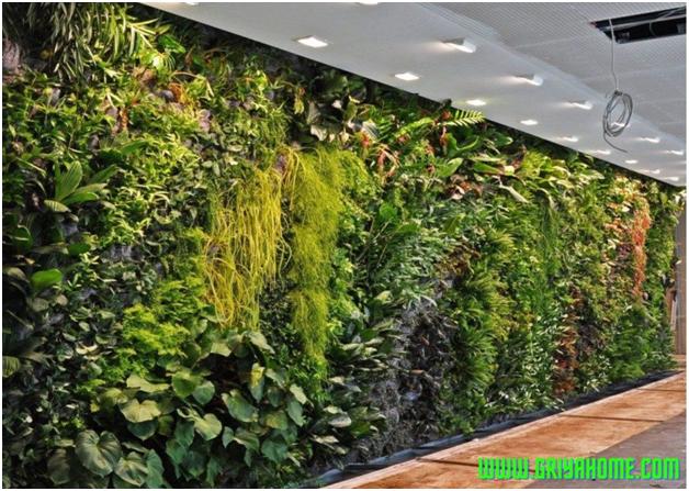 5 Manfaat Taman Dinding Dalam Rumah