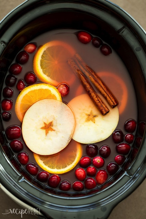 Slow Cooker Cranberry Apple Cider www thereciperebel com