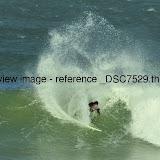 _DSC7529.thumb.jpg