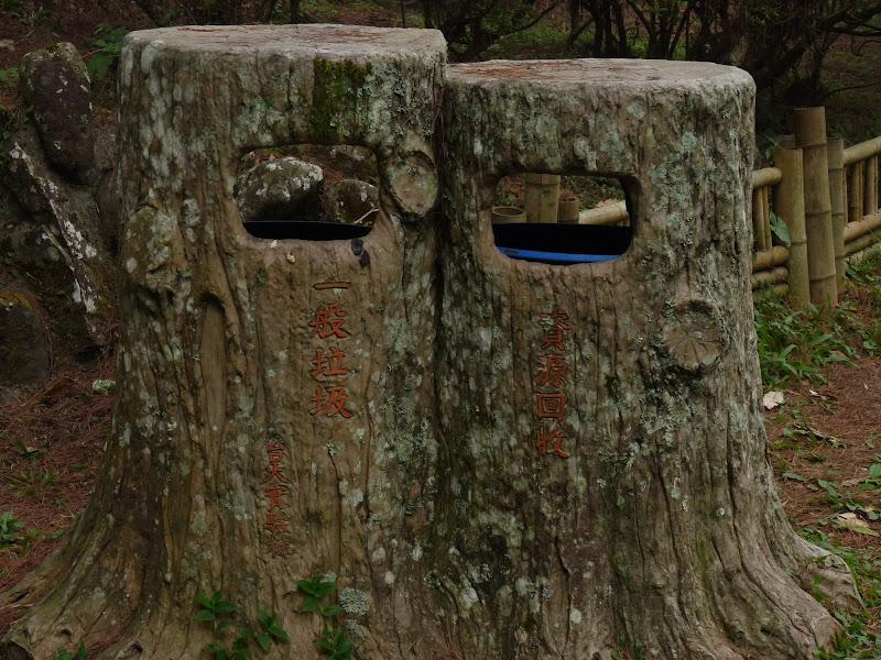 Taiwan.Chi Tou forest. Bonne intégration au paysage