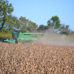 Rohrscheib Farms - 2011 Harvest