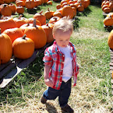 Pumpkin Patch - 114_6542.JPG