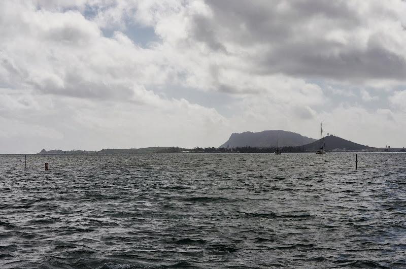 06-18-13 Waikiki, Coconut Island, Kaneohe Bay - IMGP7008.JPG