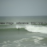 _DSC7236.thumb.jpg