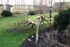 Schade in eigen tuin