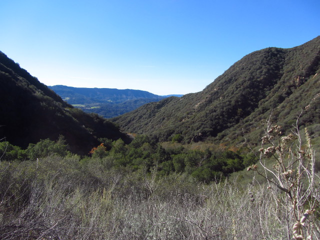 the view of the lower valley of Horn Canyon