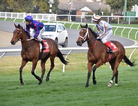 race 6_aj stakes_krone 4