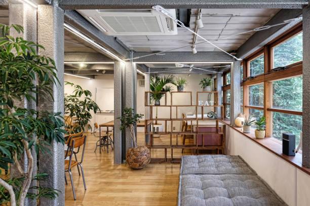 Tanaman Hias Indoor Pembersih Udara dan Penghias Rumah