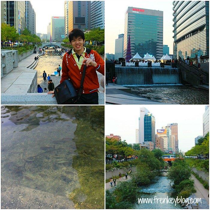 Cheonggyecheon Stream, karena air nya bersih ada ikan nya juga loh :)