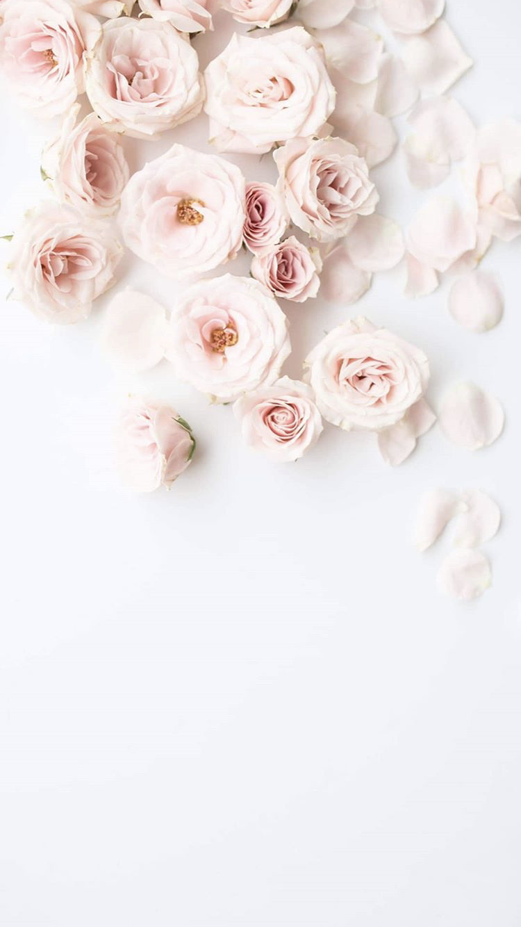 pink flowers on white marble