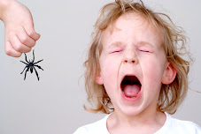 ¿Sabes cuáles son las fobias más comunes?