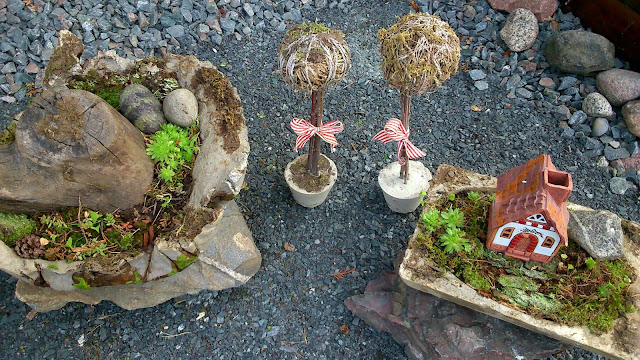 concrete pots with moss garden