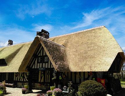 Elegancki dom kryty strzechą we francji