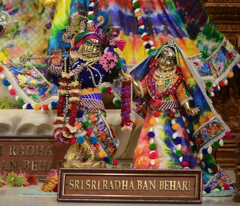 ISKCON GEV (Wada) Deity Darshan 21 Jan 2016 (10)
