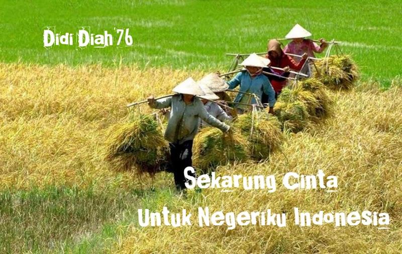 Sekarung Cinta untuk Negeriku Indonesia