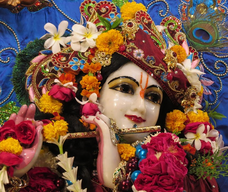 ISKCON Vallabh vidhyanagar Deity Darshan 07 jan 2017 (11)