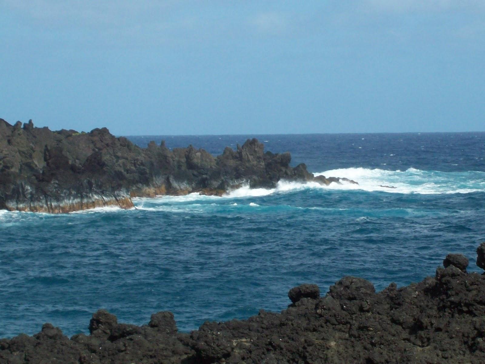 Hawaii Day 5 - 114_1536.JPG
