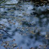 L'istante dell'acqua