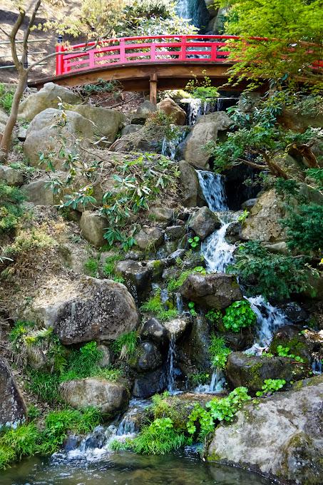 藤田記念庭園 写真4