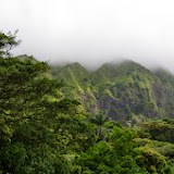 06-18-13 Waikiki, Coconut Island, Kaneohe Bay - IMGP6949.JPG