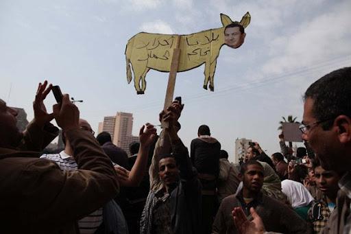 Egyptian Revolution شريف الحكيم TahrirProtest003