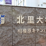 2014 Japan - Dag 2 - marjolein-IMG_0260-0168.JPG